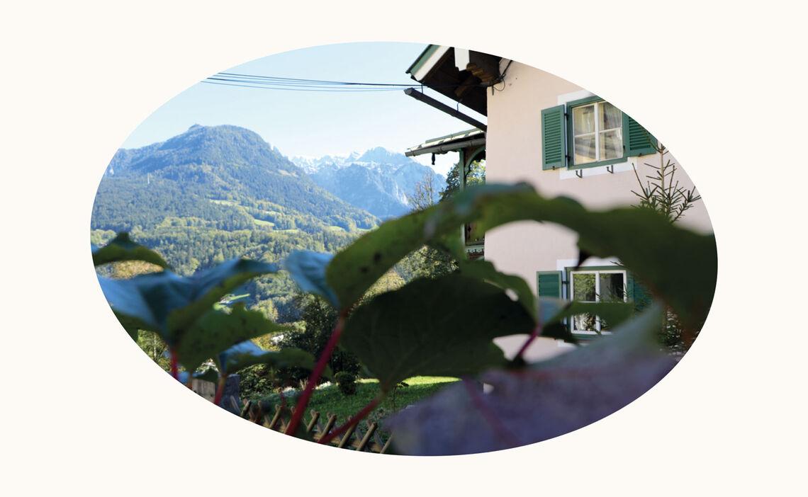 Website Galerie Fuerstenstein Ovale 8